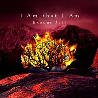 I Am that I Am by I.M. Spadecaller