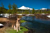 Cody Near Mount Bachelor, Oregon