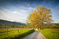 Hyatt Lane in Cade's Cove - Smoky Mountains