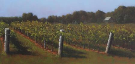 Stony Knoll Vineyard VII