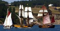 Penn Cove Sailing Ships Variation 3