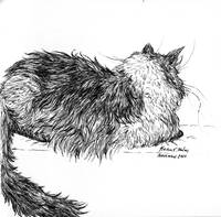 Pen and Ink Cat