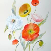 Poppies in the Sun Art Prints & Posters by Pamela Morris