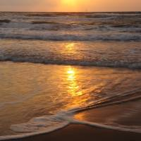 Sunrise Gulf of Mexico South Texas II by Laura Mountainspring