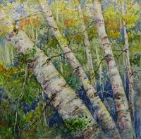 A New Look at Aspens