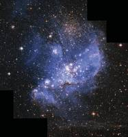Embryonic Stars in Small Magellanic Cloud