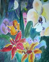 Lillies and Orchids