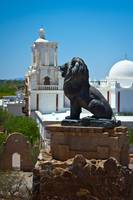 The Lion of San Xavier