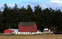 Whidbey Barn No More