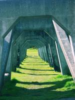 Arches of Concrete