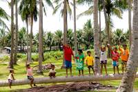 Kids Bouncing on Downed Palm Trunk