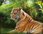 Tiger in Vivid Jungle