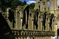 Fountains Abbey in Summer 6 by Priscilla Turner