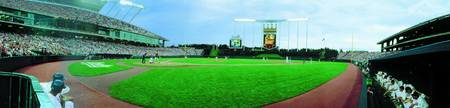 Kansas City Royals Panoramic