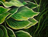 Hosta Leaves and Grass