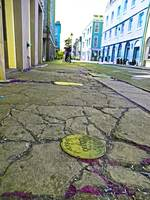 Bienville Street Sidewalk, French Quarter, New Orl