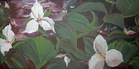 Trilliums for Sandra