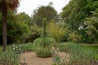 In the Physic Garden, Chelsea 50