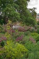 In the Physic Garden, Chelsea 40