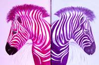 Zebra Popart Pop Art Paintings