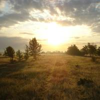 Sunrise in the country Art Prints & Posters by aksonova