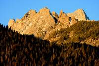 Sawtooth Sunrise Trees