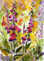 Forest Flowers Digitalis Foxglove Watercolor