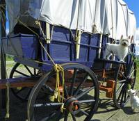 Beni And Phoebe - Oregon Trail Wagon