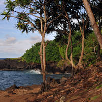 ANOTHER GLIMPSE OF HAWAII by J DeVereS