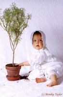 Toddler girl with marguerite tree