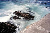 Pacific Grove Waves