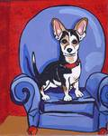 Queen Lucy: Rat Terrier