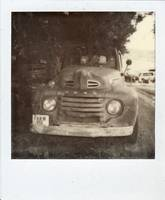 Black Beauty Polaroid