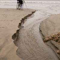 Photographers on Beach, Point Reyes by Betty Sederquist