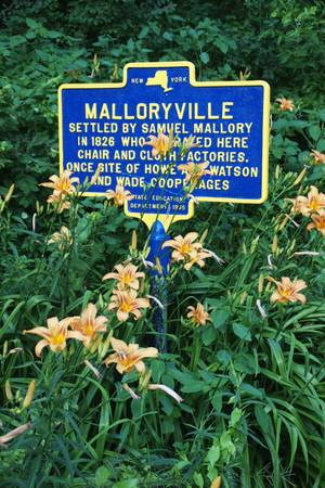 Tiger Lilies and Historic Sign