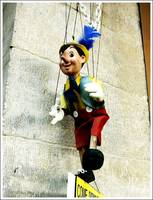 The Little Pinocchio