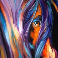 EQINE EYE by M BALDWIN by Marcia Baldwin