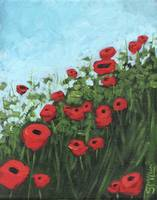 Poppy Field Series, Number 2