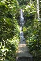 Small cascade in the Botanical Garden in Rio de Ja
