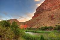 Owyhee River and Brown Trout