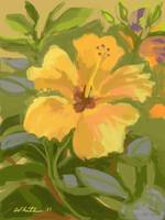 Butterscotch Hibiscus