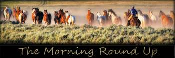 The Morning Round Up