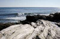 Beavertail Beach, Jamestown, RI