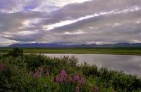 Denali Highway Lake