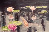 Water lillies and koi