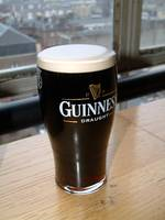 Fresh Pint of Guinness