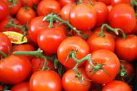 Red Juicy Tomatoes