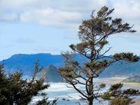 Haystack Rock, Cannon Beach, Oregon 2