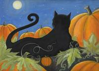 Black Cat with Pumpkins