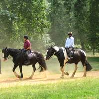 Horse-riding in 'Rotten Row' in Hyde Park, London